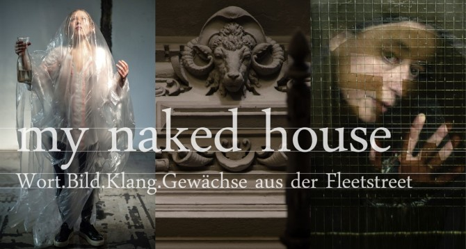 Read more: my naked house
